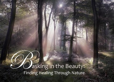 >Basking in the Beauty: Finding Healing through Nature